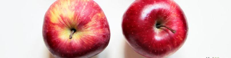 manzana-blog