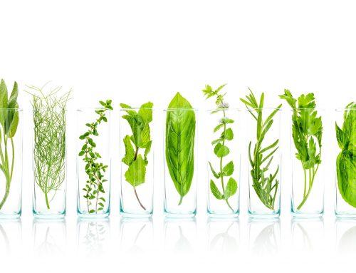 7 Ingredientes naturales para mejorar la piel atópica