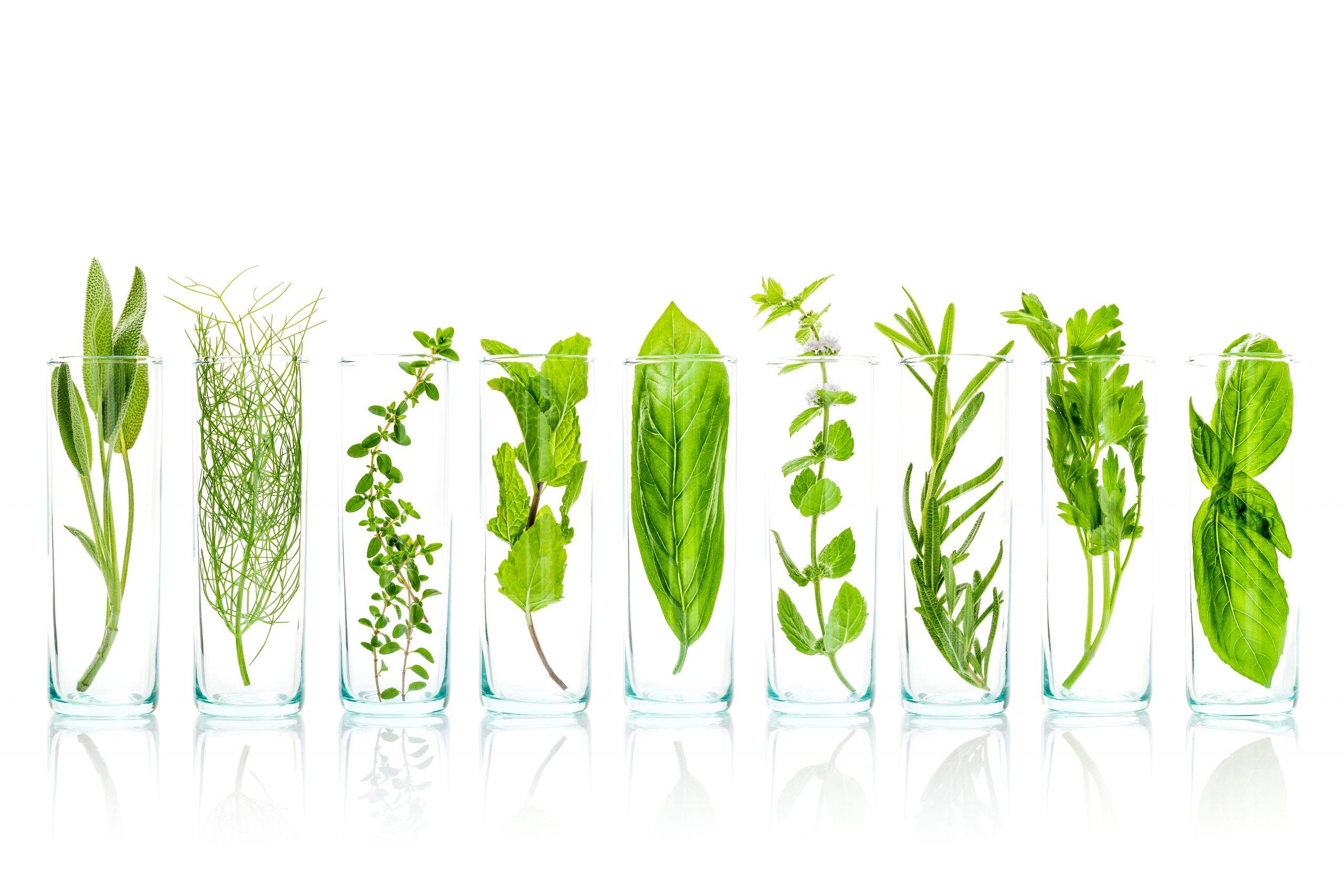 ingredientes naturales para la piel atópica